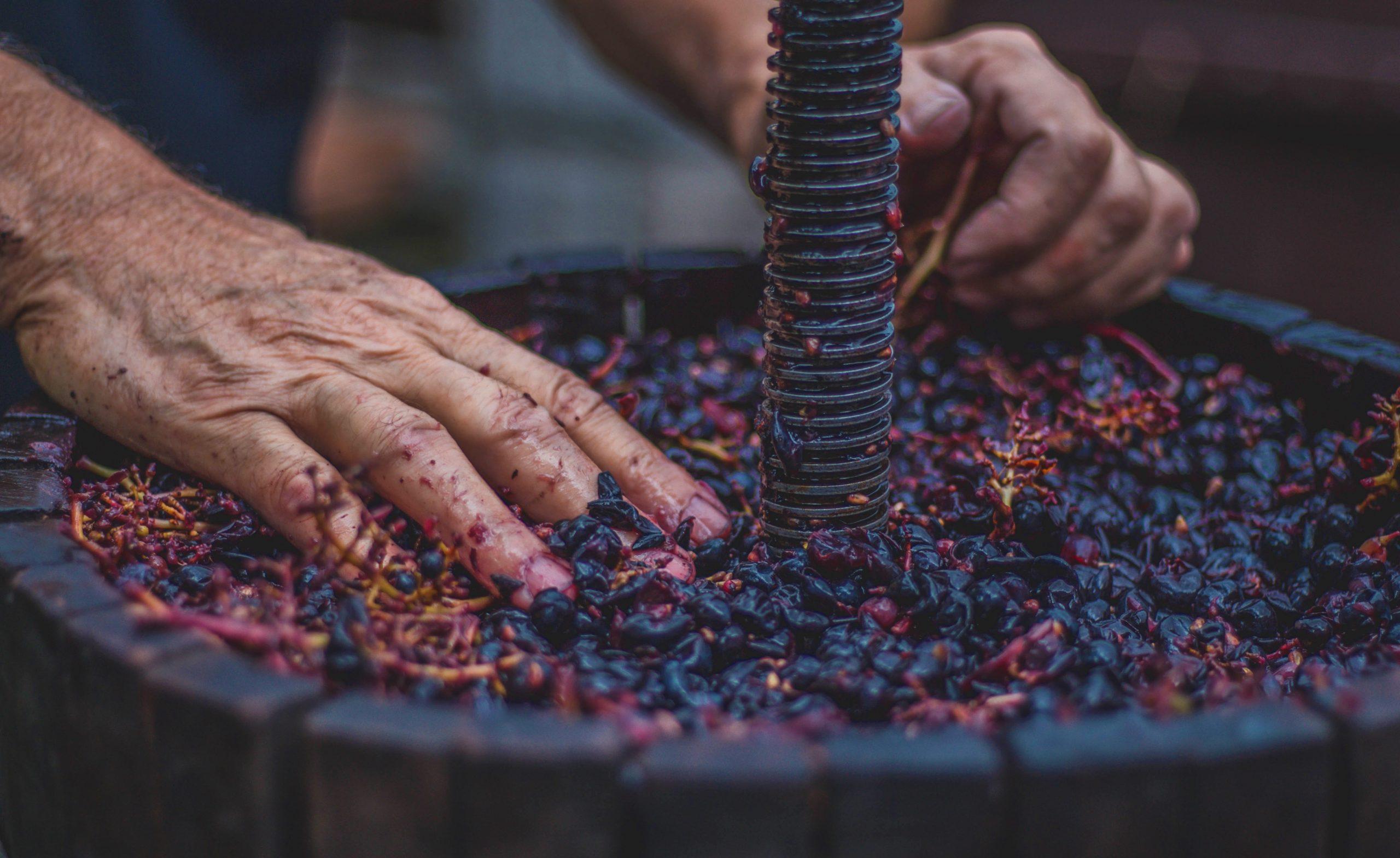 artisan, sustainable
